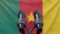 Les deux principaux défis politiques de l'heure au Cameroun