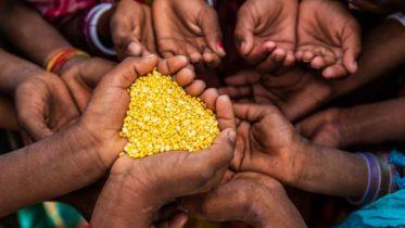 les enjeux de la faim au Cameroun